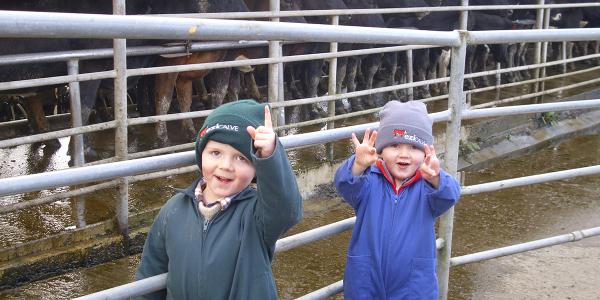 Dairy-Beef integration provides you and your family with more opportunities
